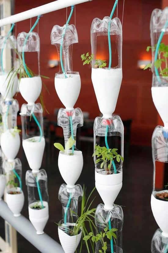Vasos com garrafas plásticas