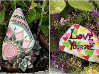Pedras pintadas para jardim