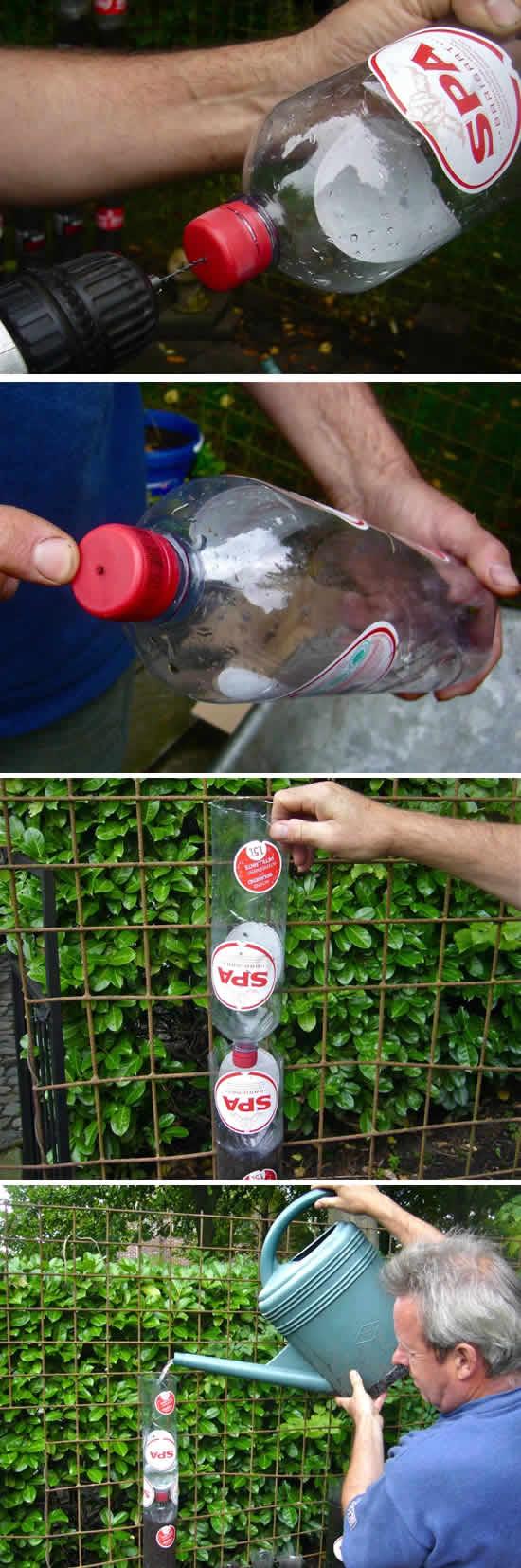 Como fazer horta com garrafa PET