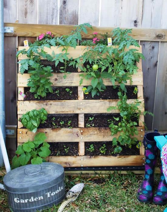 Crie uma horta com pallets