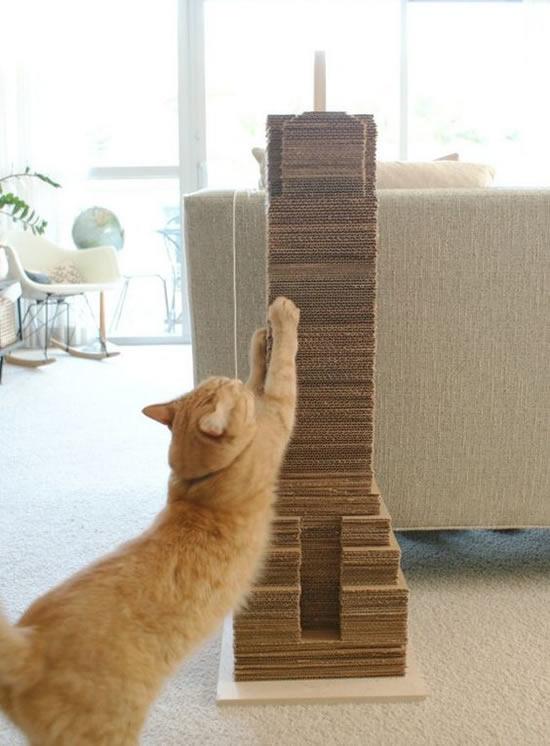 Arranhadores para gatinhos