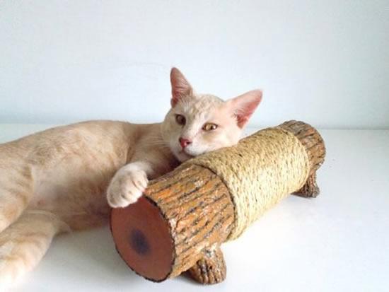 Lindo arranhador para gato