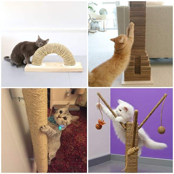 Arranhadores criativos e caseiros para gatos