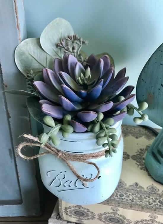 Lindo arranjo decorado com suculentas
