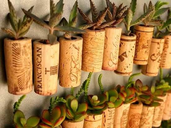 Vasinhos para mini suculentas com rolhas