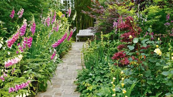 Caminho lindo para jardim