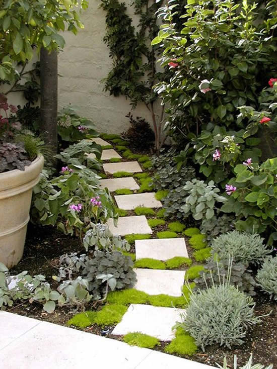 Caminho com lajotas para jardim