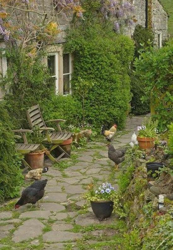 Lindo caminho de jardim com pedras