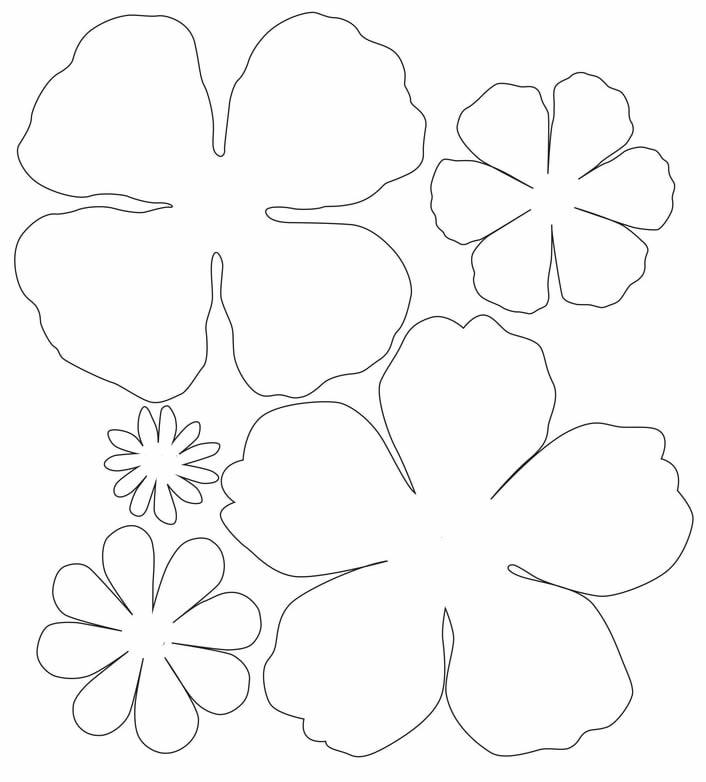 Lindos moldes para flor de papel