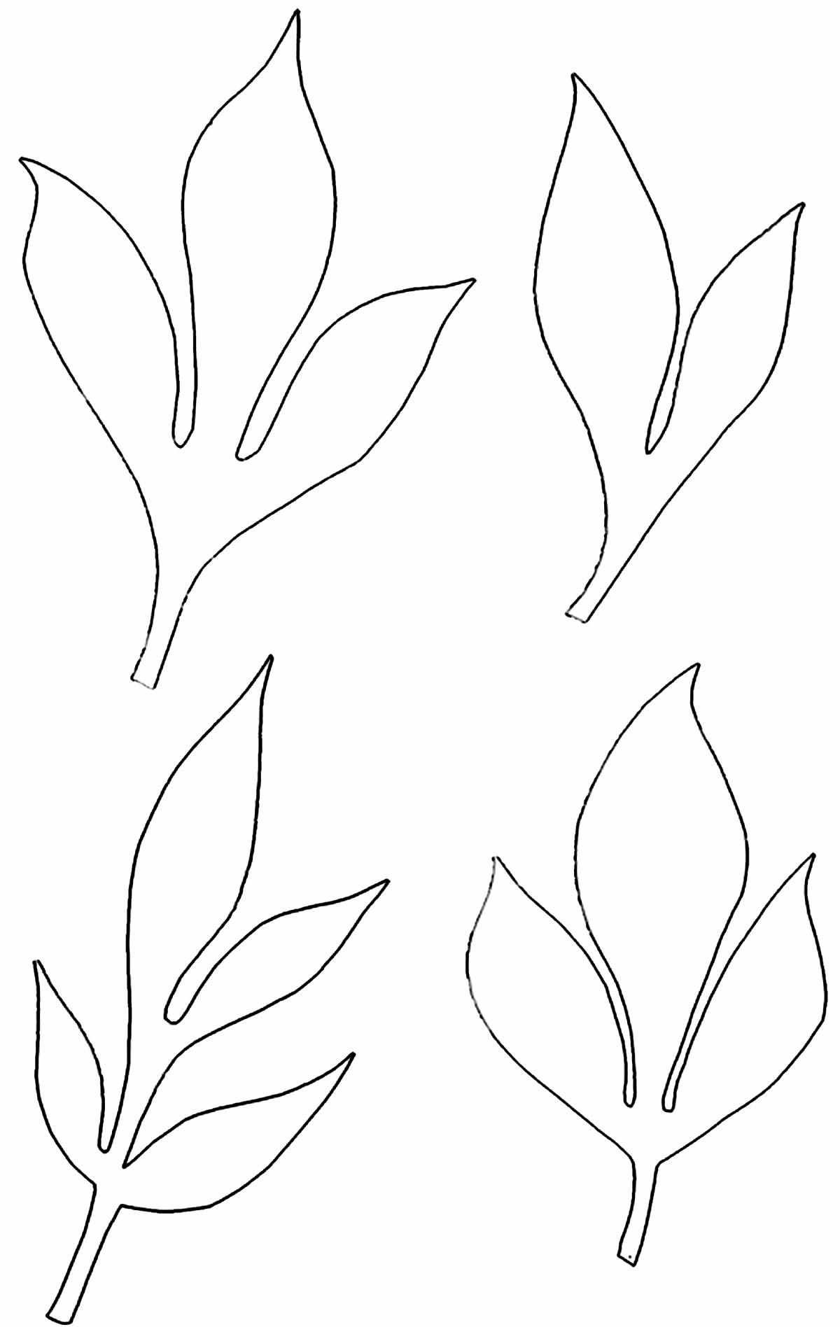 Moldes para decoração com flores de papel