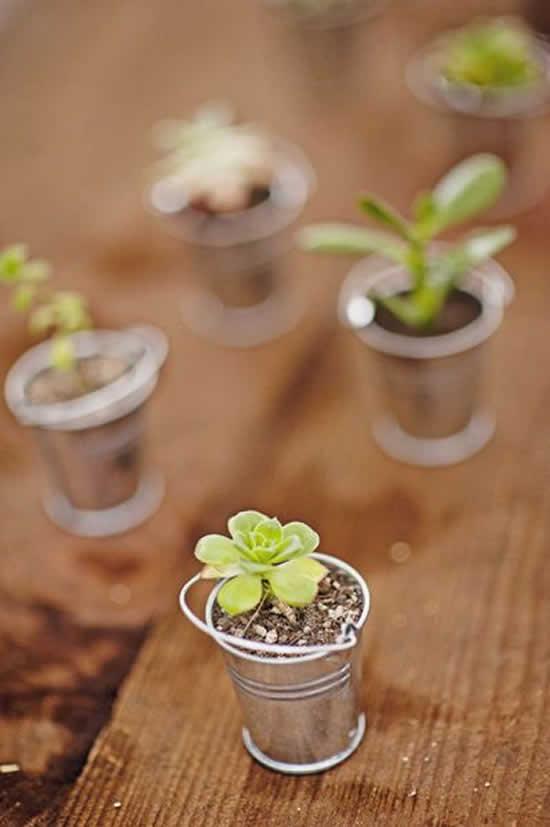 Lembrancinhas com mini suculentas