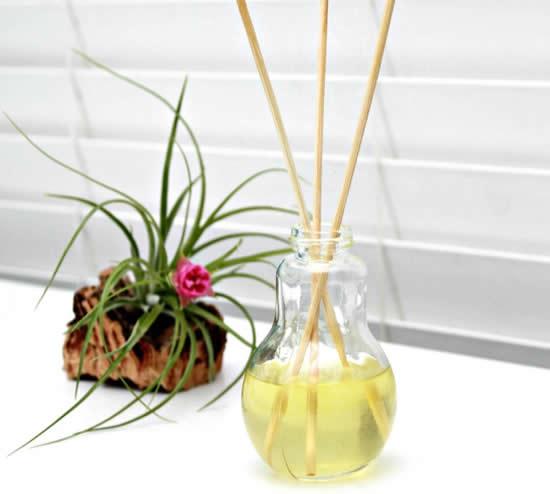 Recicle vidros e faça difusores de ambientes