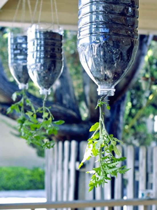 12 ideias para horta caseira com garrafa PET
