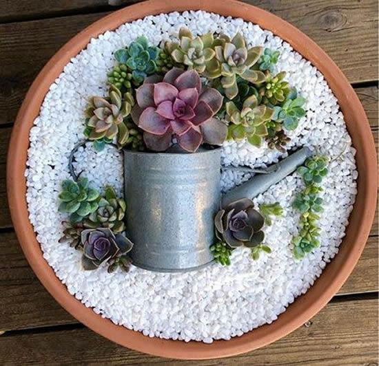 Dica criativa para plantar mini suculentas