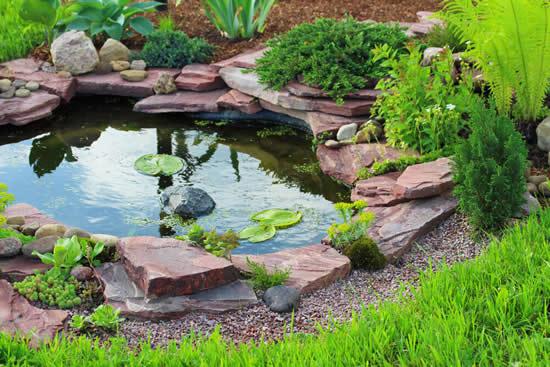 Lago no jardim