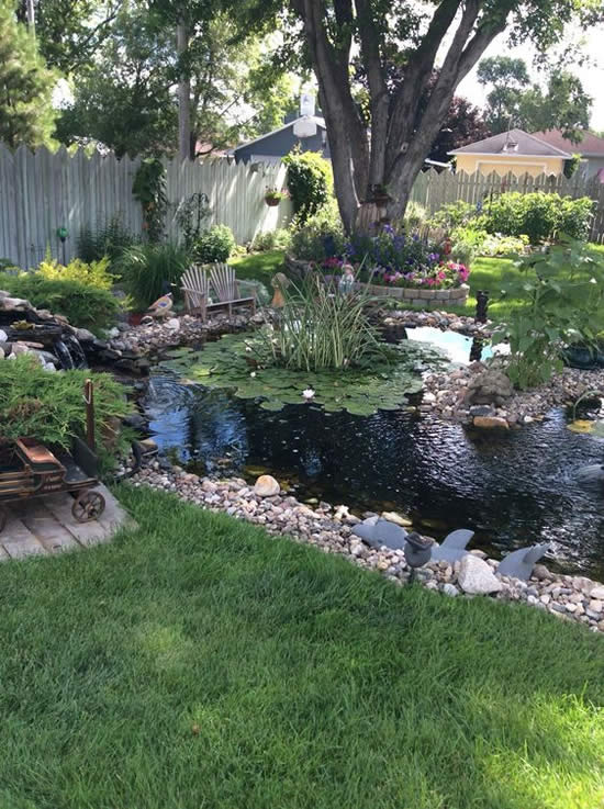 Lindos lagos de jardim