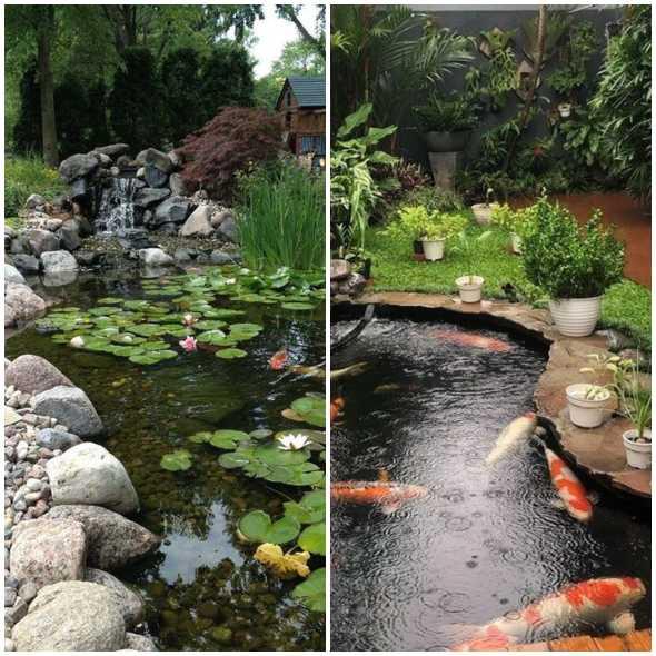 Lagos de jardim para inspiração