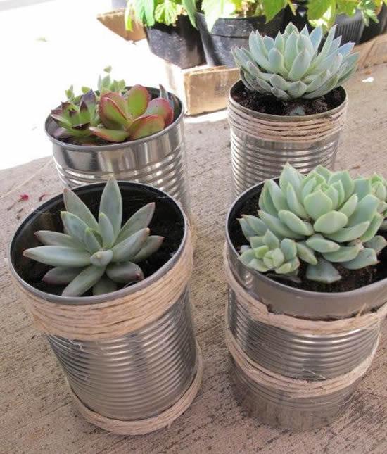 Linda decoração com latas e mini suculentas