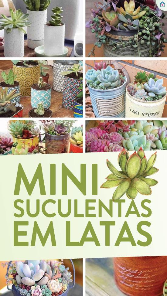 15 inspirações de mini suculentas em latas