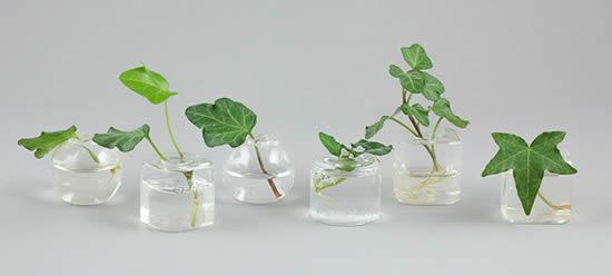 Dicas criativas para reaproveitar vidrinhos de esmalte