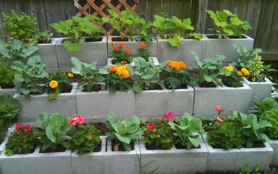 Blocos de concreto no jardim para fazer vasos