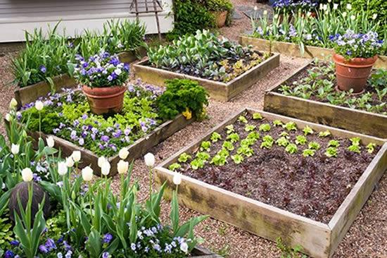 Use caixotes para fazer uma horta caseira