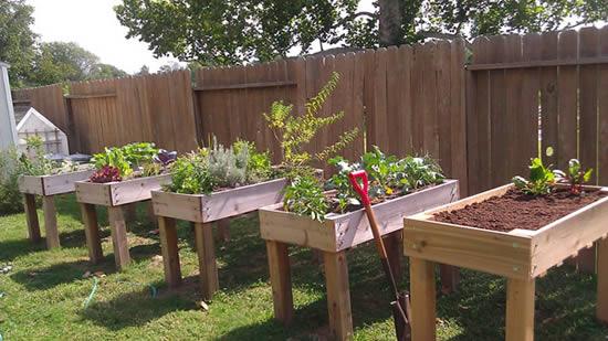 Ideias e dicas para horta caseira com caixotes