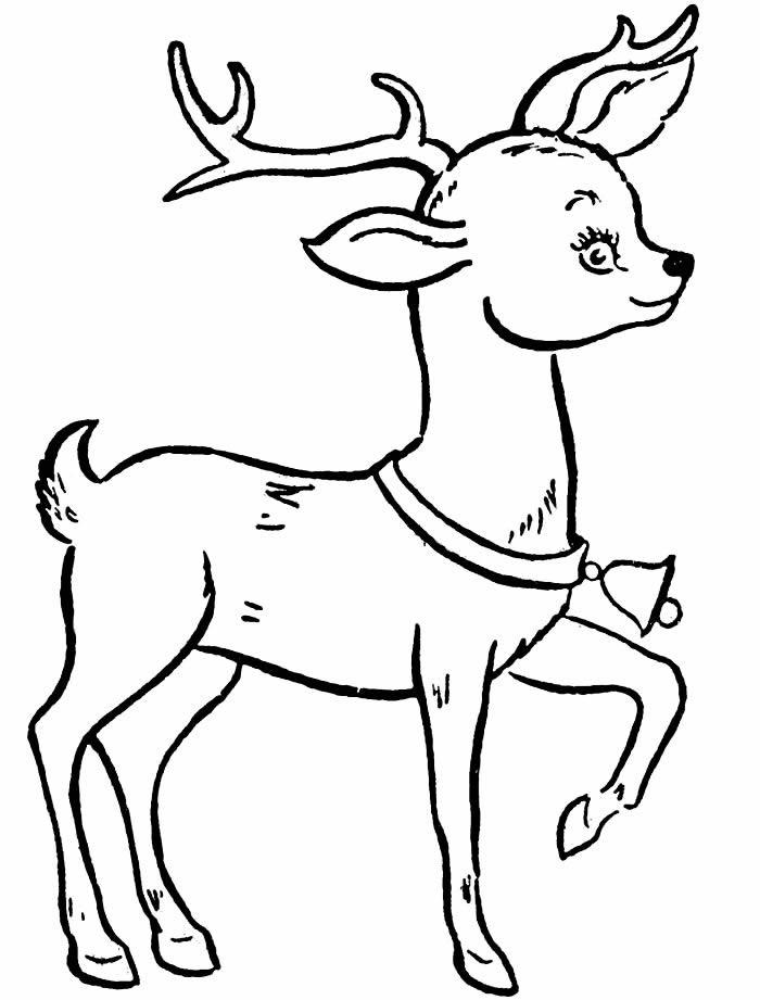 Desenho de rena para colorir
