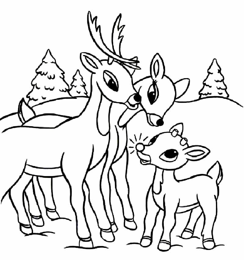 Desenho de renas para pintar