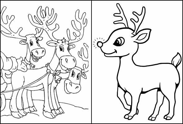 10 Desenhos De Rena De Natal Para Colorir Dicas Práticas