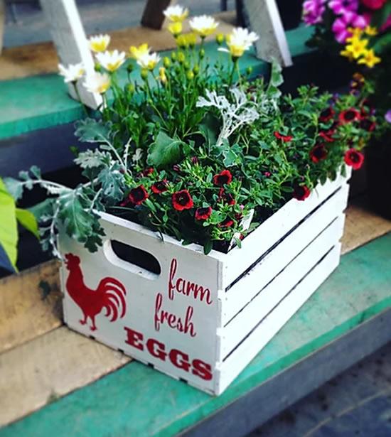 Decoração com caixotes para jardim