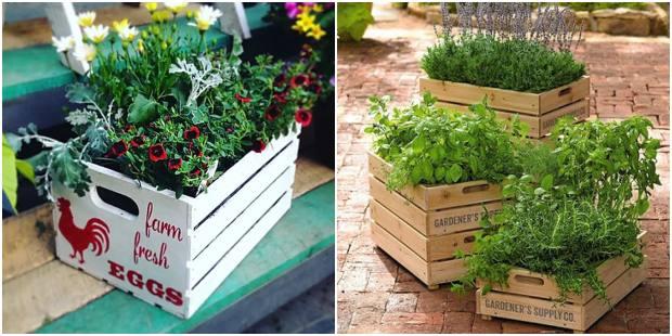 Como utilizar caixotes na decoração do jardim