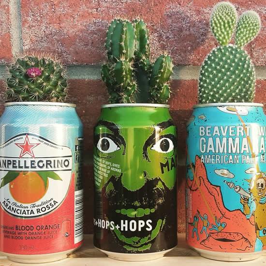 Ideias para plantar cactos em vasos feitos de latas