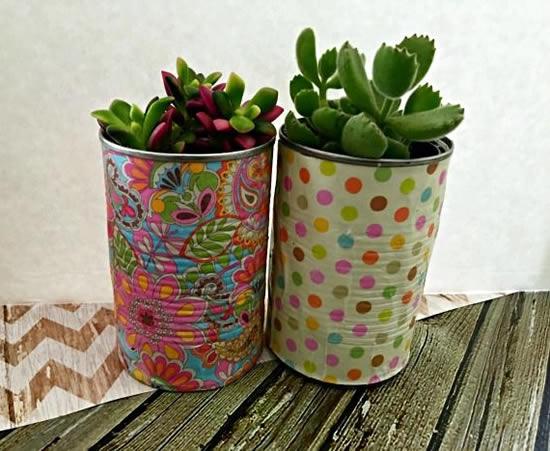 Vasos de latas com suculentas