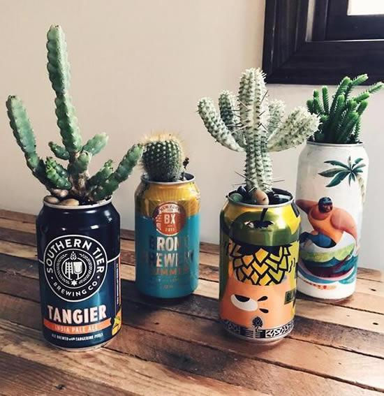 Vasos de latas com cactos
