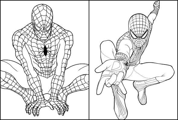 Imagens De Homem Aranha Para Colorir Dicas Práticas