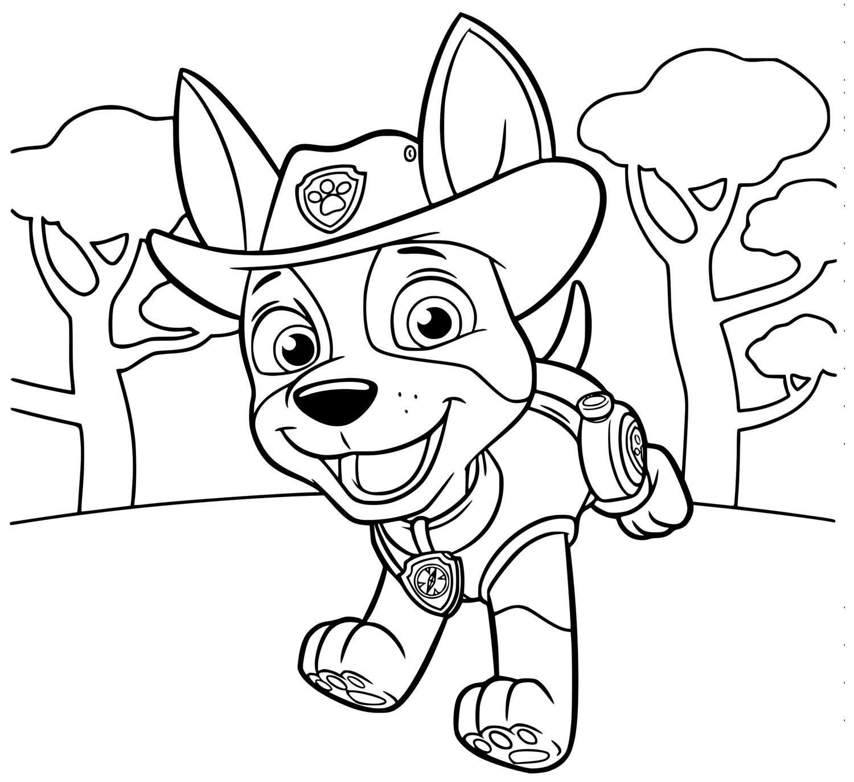 Desenho de Patrulha Canina para colorir
