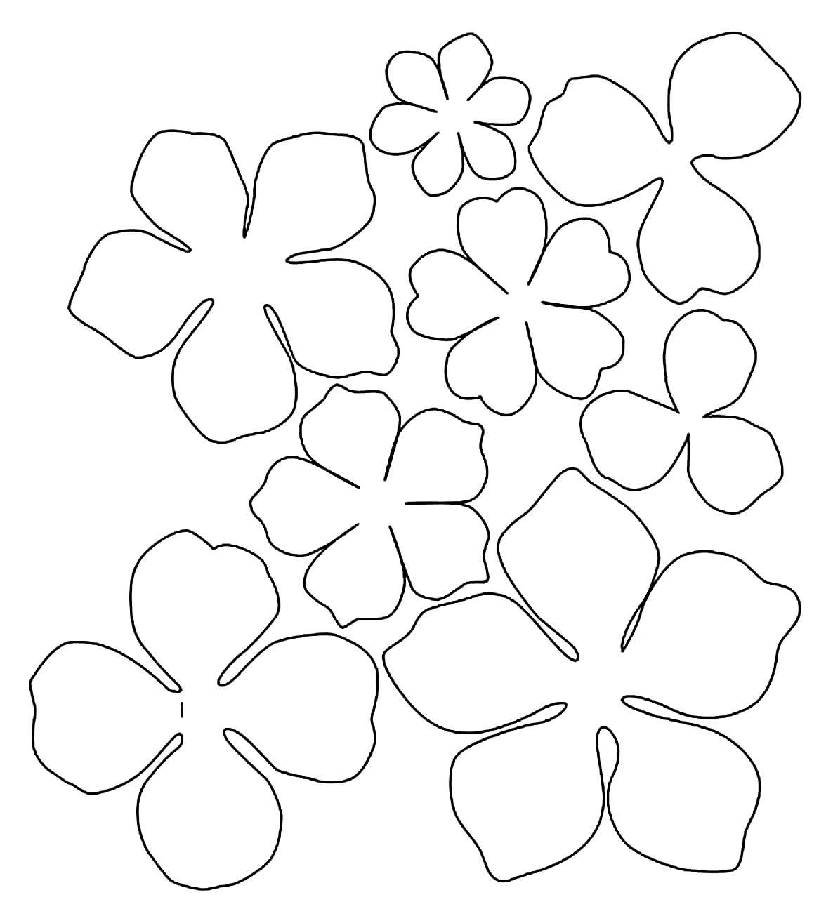 Moldes de flores de papel