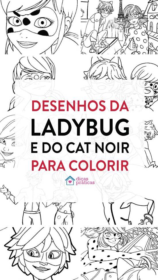 Desenhos da Ladybug e do Cat Noir para colorir