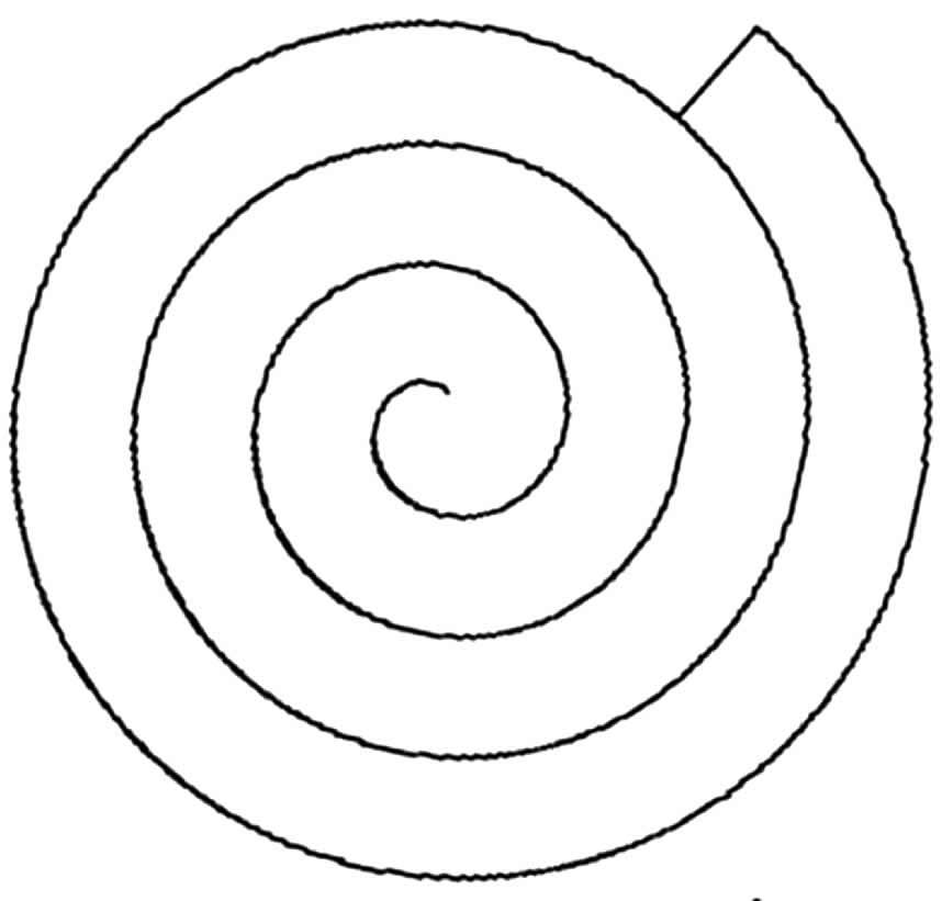 Molde de rosa de papel em espiral