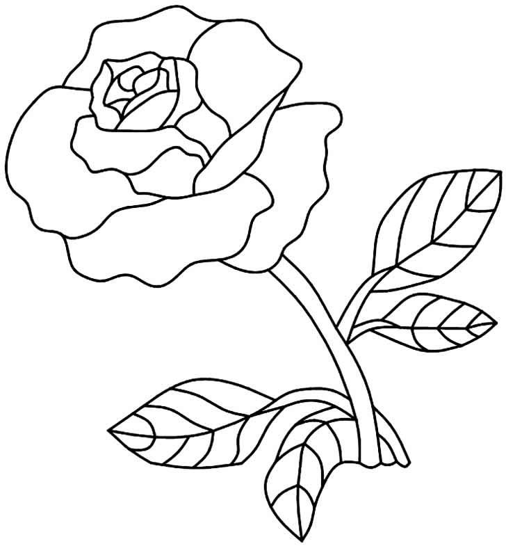Molde de flor para fazer artesanato