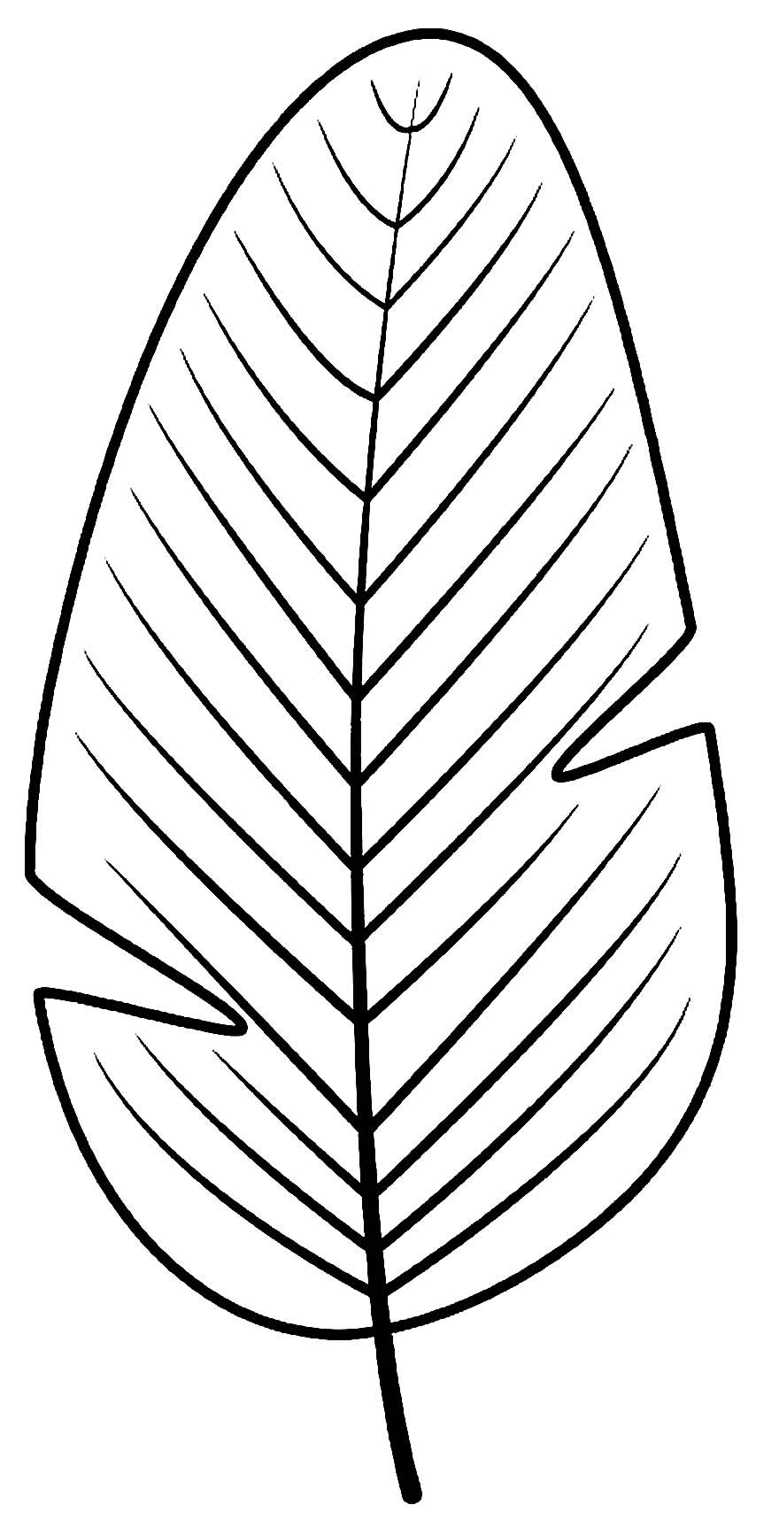 Molde de folha para decoração de festa