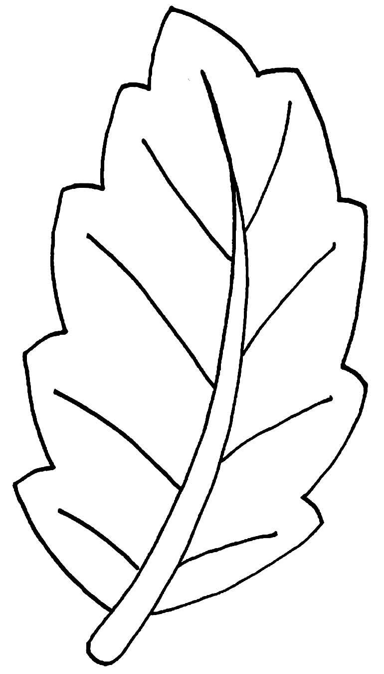 Molde para fazer folha de papel