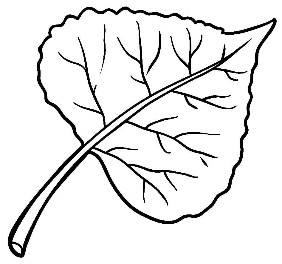 Molde de folha para festa tropical