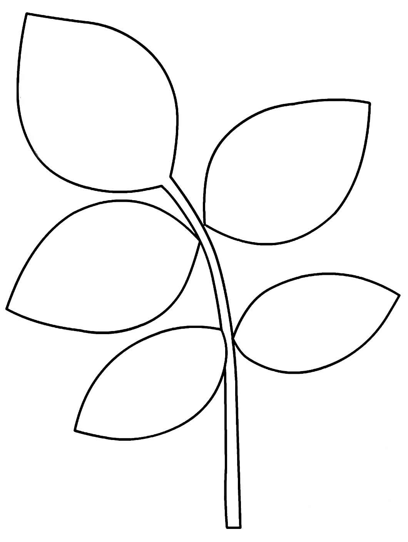 Molde para folha tropical