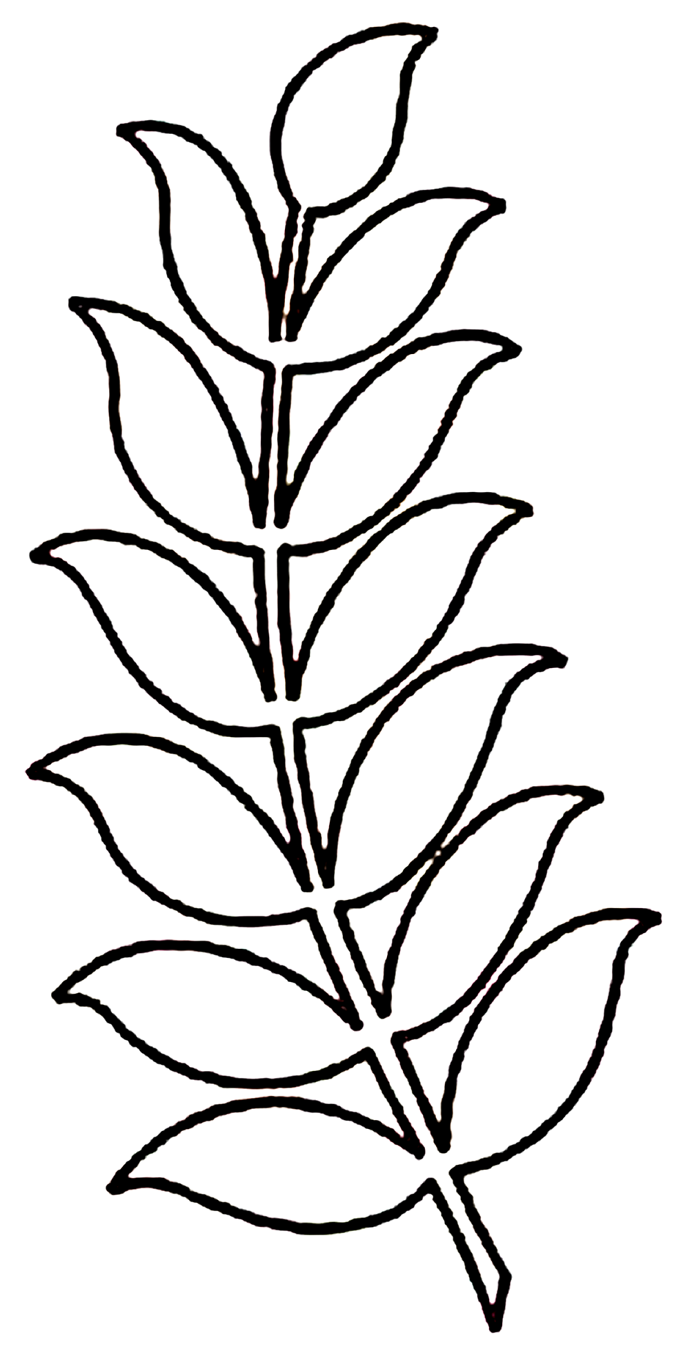 Moldes de folhas para decoração de festa tropical