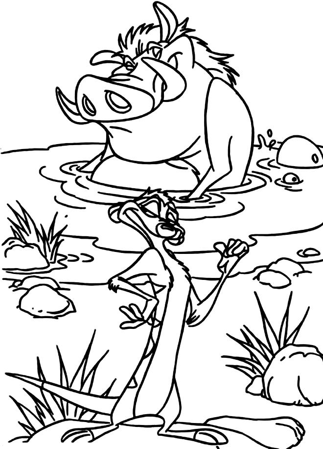 Desenho de Timão e Pumba