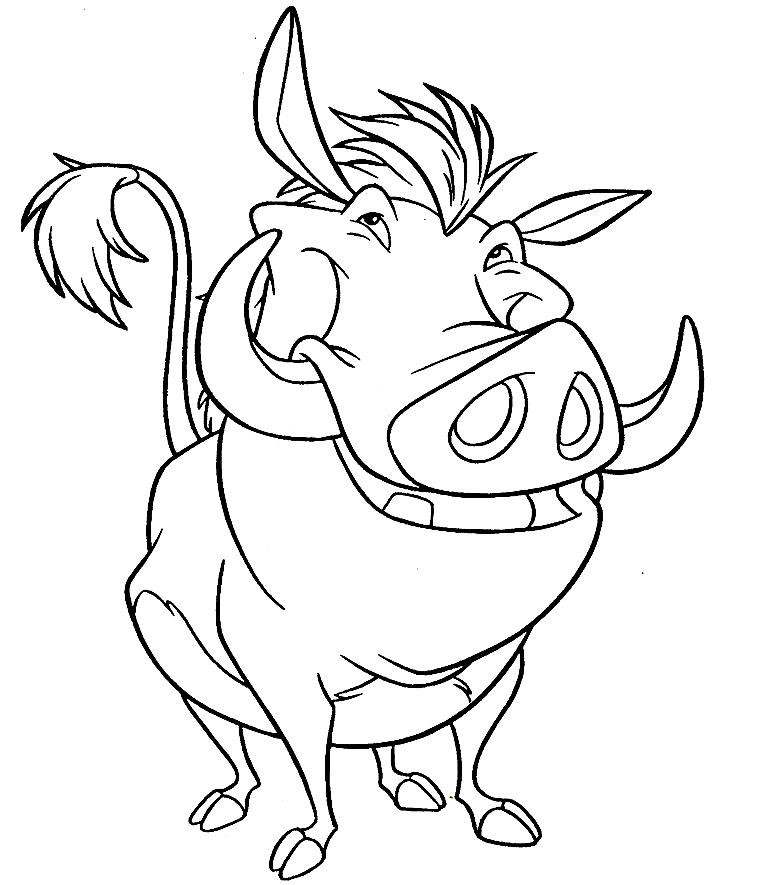 Imagem de Timão e Pumba para colorir