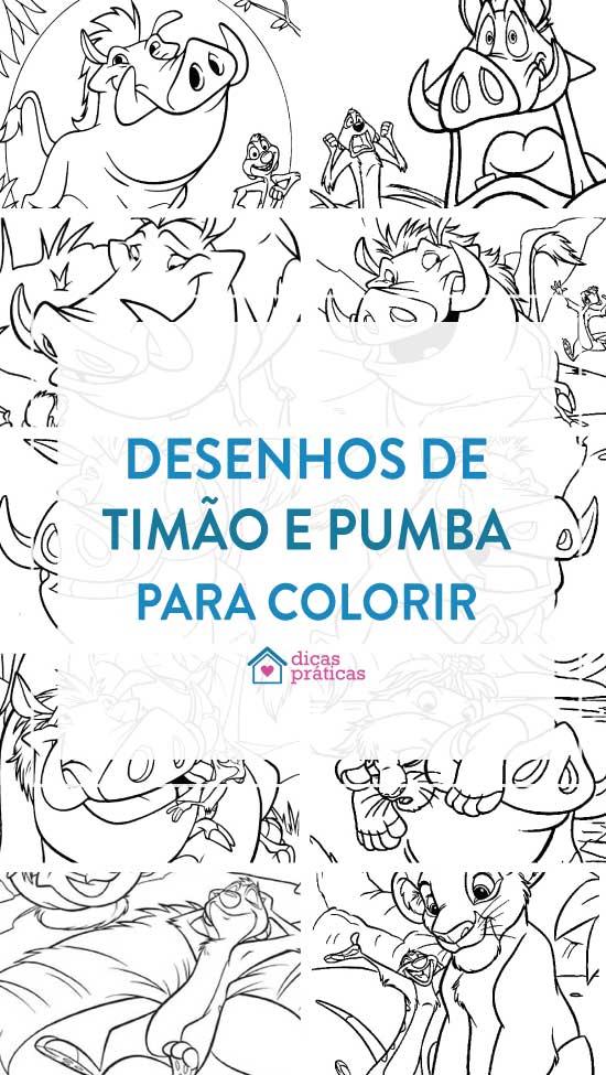 Desenhos de Timão e Pumba para colorir