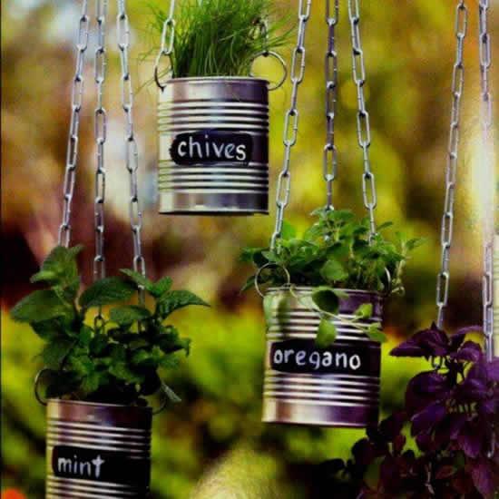 Horta com latas